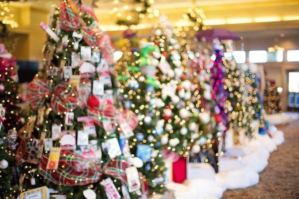 Az idén plafonig ér majd a karácsonyfa!