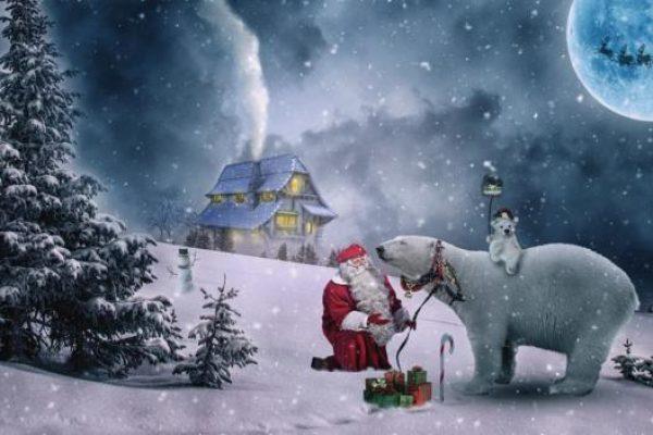 Karácsonyi verseskötet Skolik Ágnestől | Hangolódj az ünnepekre!