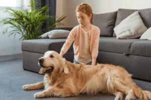 Nálatok laknak-e állatok? gyerek kutya minimag