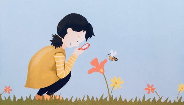 A méhek világa: Mi ez a felhajtás a méhek körül?