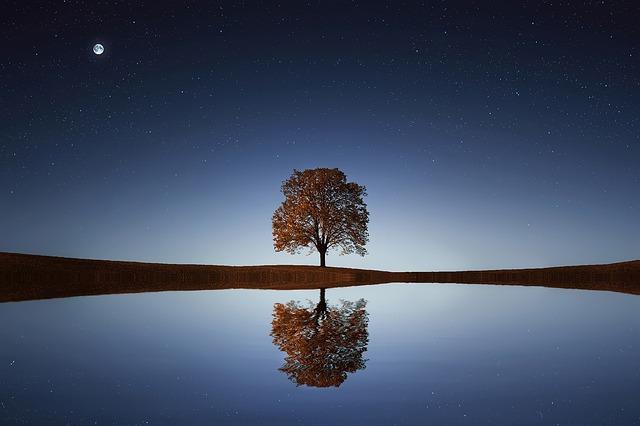 60 fa Zöldebben élhetőbb a világ