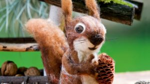 Diy nemez mókus