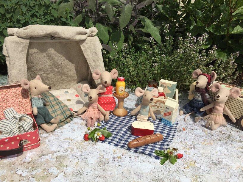 piknikezik a plussom minimag